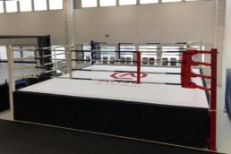 Väkevä Boxing Nyrkkeily